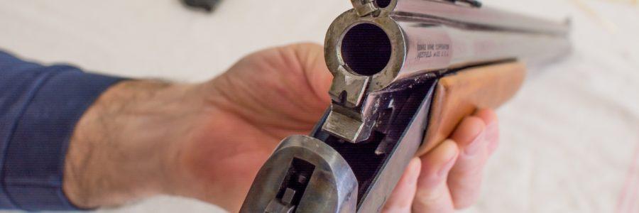 gun-1340246